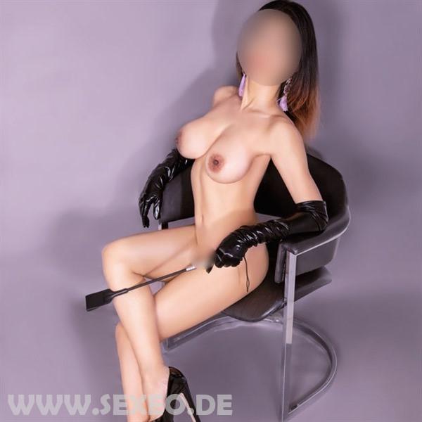modell-image